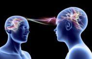 نورونهای آینهای: بنیان عصبشناختی روابط اجتماعی و همدلی در انسان